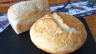 "Ultimate Introduction To No-knead ""turbo"" Bread  Ready To Bake In 2-1/2 Hours"