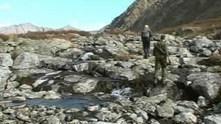 Среди Алтайских гор. 2006 год