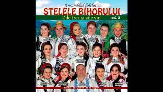 Descarca Stelele Bihorului - Zile trec si zile vin