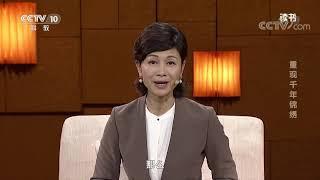 《读书》 20191210 北京日报人物采写组 《国宝修复师》 重现千年锦绣| CCTV科教
