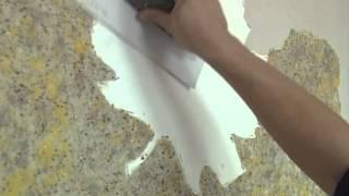 Мастер-класс по работе с жидкими обоями Биопласт(Мастер-класс по работе с жидкими обоями Биопласт. В этом видео вы узнаете как подготовить поверхность для..., 2012-11-08T14:52:39.000Z)