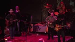 The NEIL YOUNGS - 'Buffalo Springfield Again'
