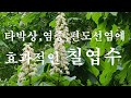 okseob Song - YouTube