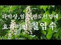 okseob Song - YouTube