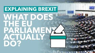 What Does the EU Parliament Actually Do? - Brexit Explained