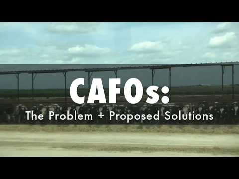 CAFOs: The Problem and Proposed Solutions