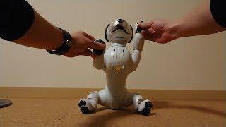aiboは芸を記憶出来ます。② - I teach Aibo the trick. thumbnail