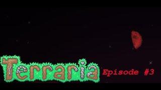 The Blood Moon Rises   Terraria #3