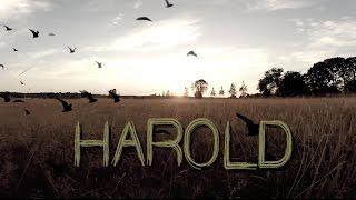 """""""Harold"""" Short Film"""