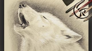 """Drawing """"Wolf howling"""" ►► Timelapse"""