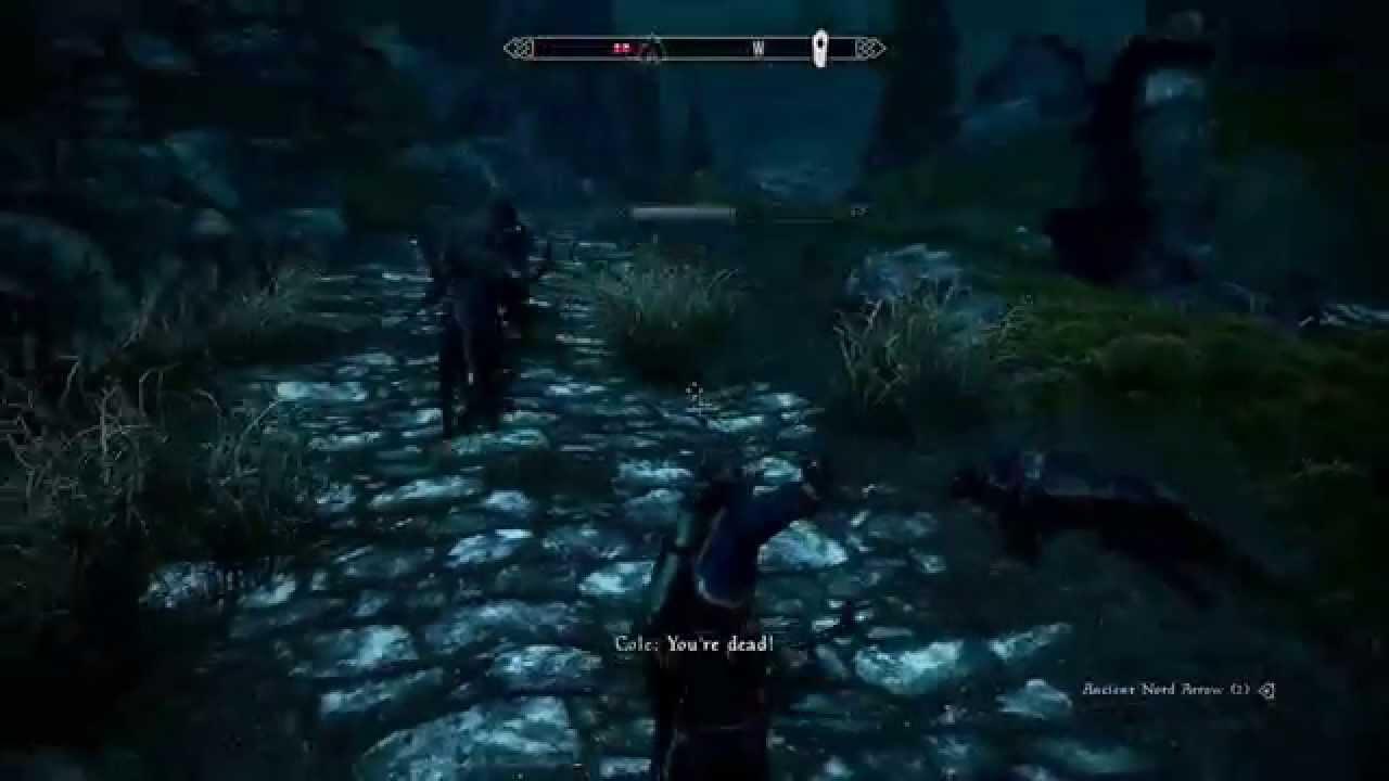 Prototype mod brings cooperative multiplayer to The Elder