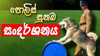 Awesome Srilanka police dog show