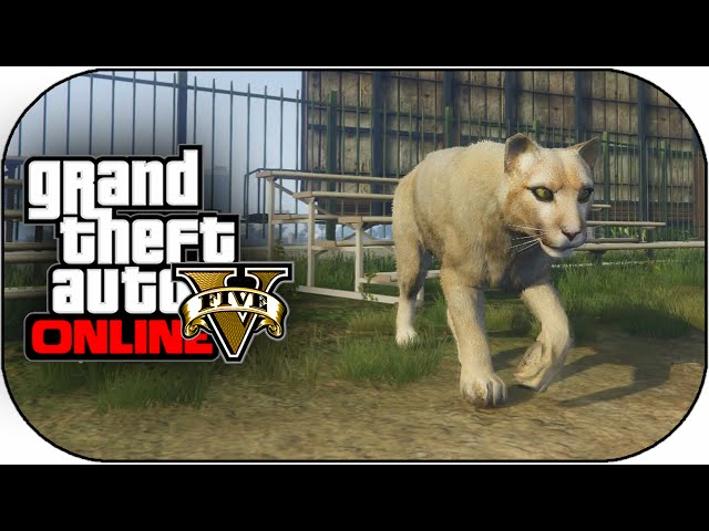 gta 5 all animals locations