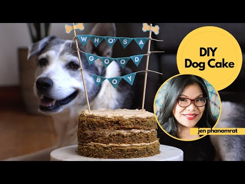 treat-your-pup-to-a-diy-dog-cake-&-photo