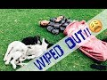 THROWING UP🤢 in the Jungle & 🐕DOGGIE RESCUE!
