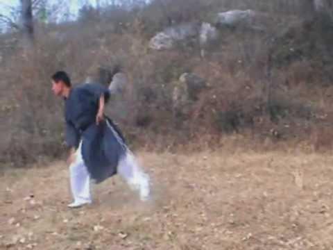 Wushu training in Dengfeng