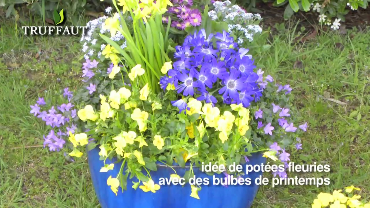 planter des bulbes d 39 t en pot jardinerie truffaut tv youtube. Black Bedroom Furniture Sets. Home Design Ideas