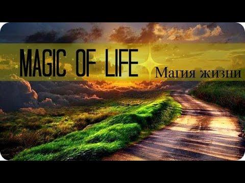 Эгрегоры, секты, маятники - будьте осторожны! 1/2 • Магия жизни