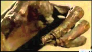 Ancient Egyptian Mummies & Sarcophagi