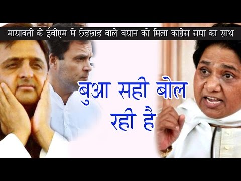 Mayawati alleges EVM tampering, gets support from SP, Congress Latest News