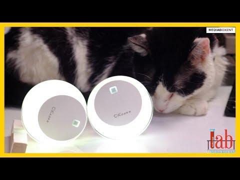 Repeat COMO CONFIGURAR LA T95Z PLUS TV BOX Android 6 0 by