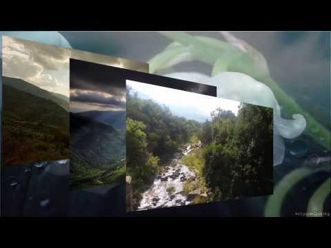 """Lily of the valley""  Gathan Graham - Piano & Dennis Ruff - Lowrey Organ"
