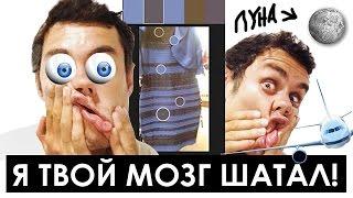5 чувств которые вас обманывают (#thedress) - ТОПЛЕС