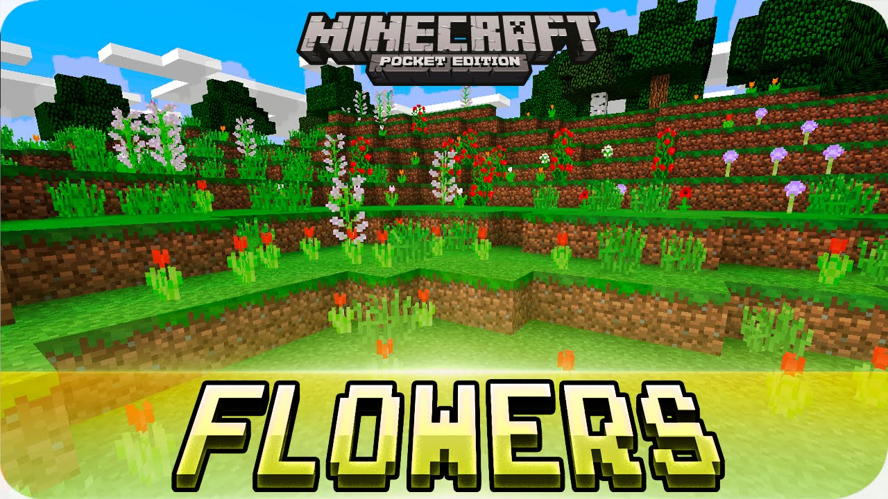 Minecraft PE Seeds - Flower Biome with Villages & Abandoned Mineshaft Seed!  8.8.8 / 8.8 MCPE