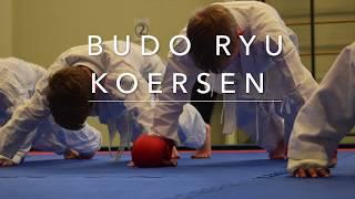Budo Ryu Koersen Assendelft Karate Kobujutsu