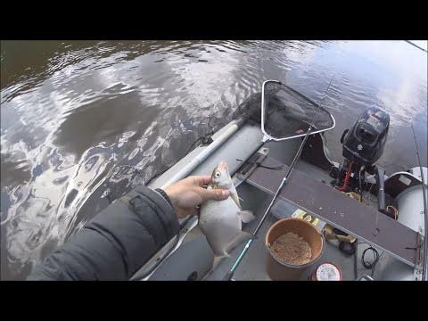 Можно ли ловить рыбу ночью в беларуси с лодки