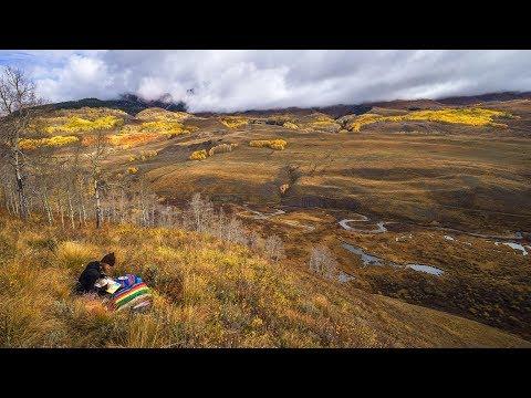Fall Impressions. A Yeti Tribe Story.
