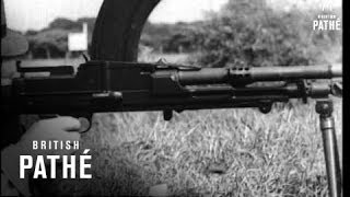 Various Guns - Bren Gun (1940) | Light Machine Gun (LMG) | Video
