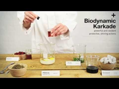 Organic Hair Color Ingredients | OWAY