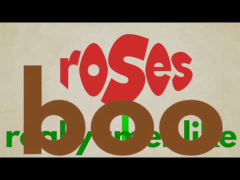 Outkast Roses - animated lyrics