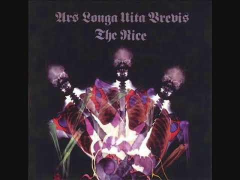 The NICE   ARS LONGA VITA BREVIS