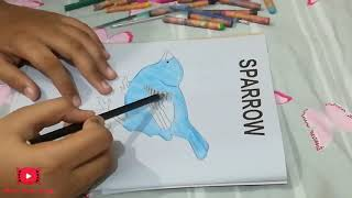 coloring for kids, coloring videos for kids No.2 ( sparrow ) - Wow Kidz vlog
