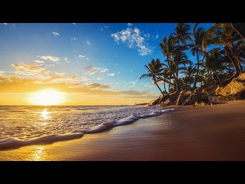 Calm Background Relaxing Music with Ocean and  Bird Sounds