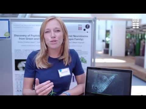 Grøn Dyst 2014: Fighting the Bite - Sustainable Antivenom Production_Pitch