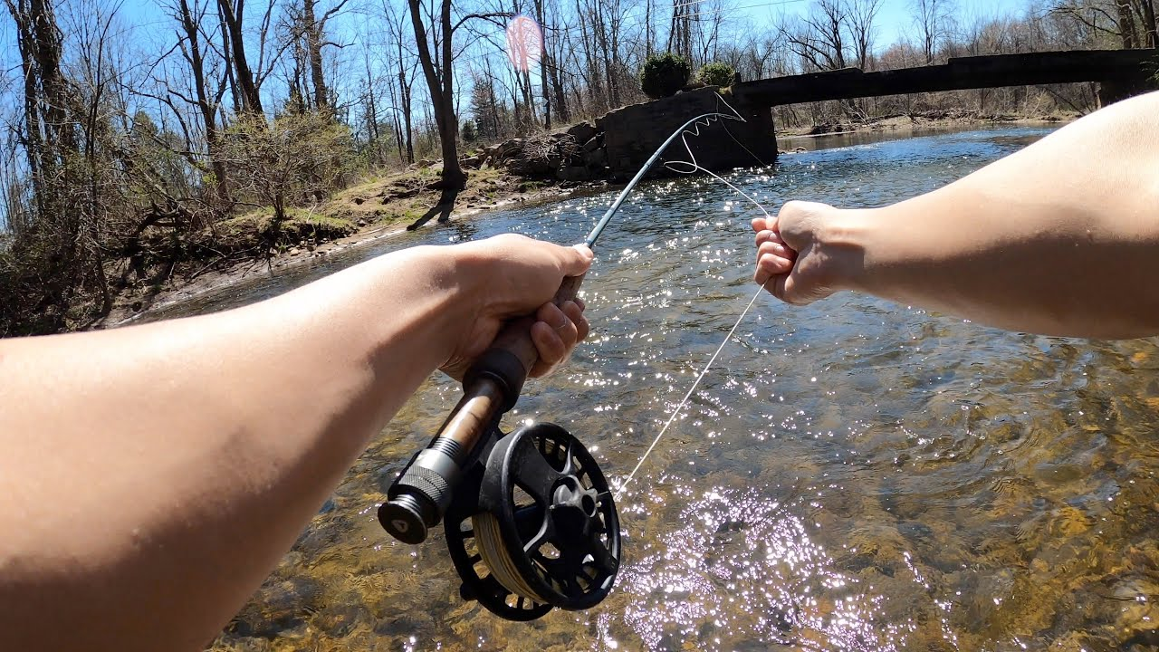FLY FISHING FOR THE FIRST TIME EVER!!! (Tutorial from Cast to Catch)