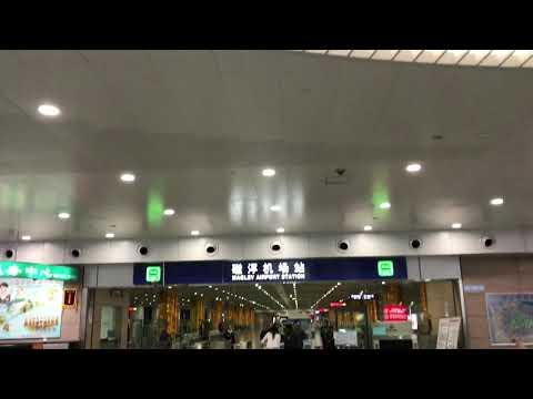 amazing-shanghai---destinations-in-shanghai---travel-short-movie