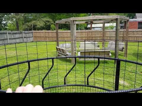 Remote Hog Trap- Home Made
