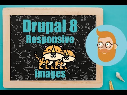 Setting Up Responsive Images In Drupal 8
