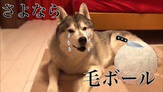 問題のツイート https://twitter.com/tsuyoshiwood/status/107395198946...