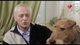 """""""Песня с историей"""": Крылатые качели"""