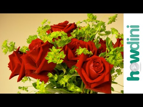 Valentine's Day Tips: How to Buy Roses  Howdini