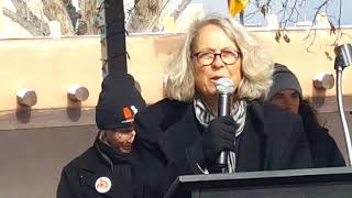 2018 Santa Fe New Mexico Women's March - Linda Siegel LGBT