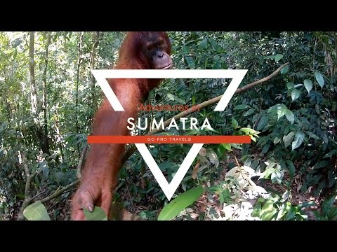 Adventures in Sumatra - Go Pro Travel Series