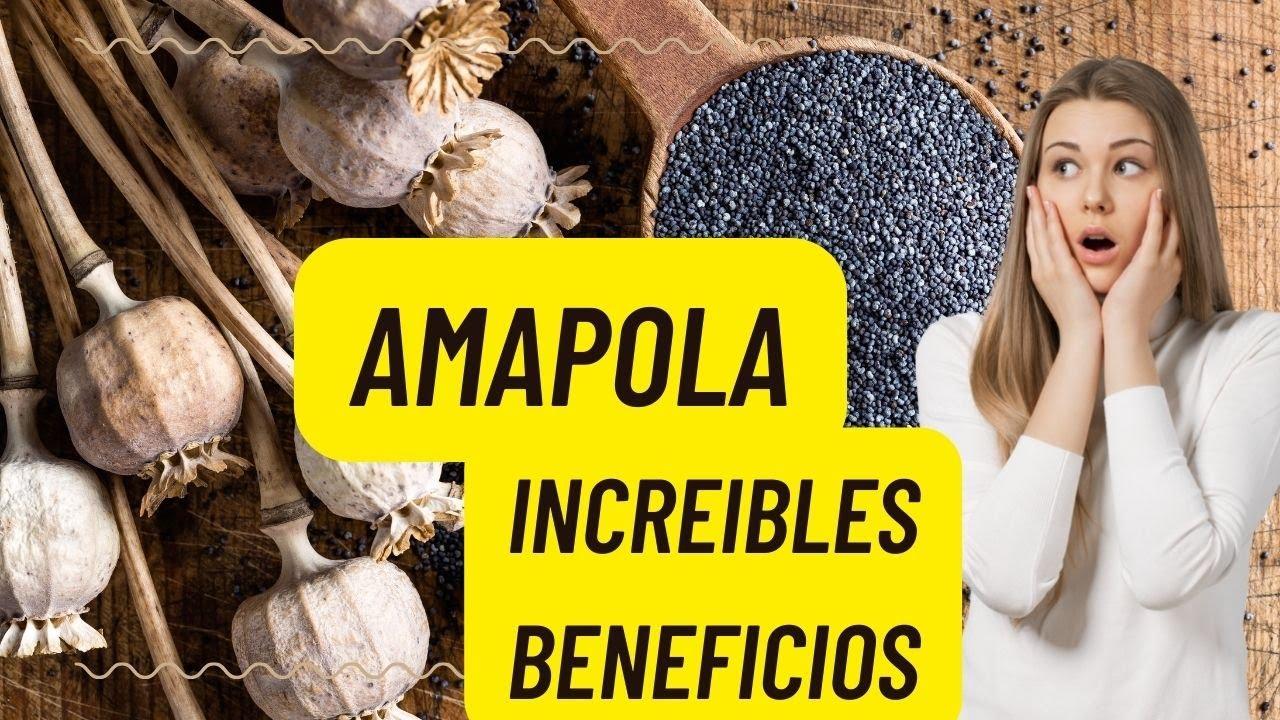 12 increíbles beneficios de las semillas de amapola