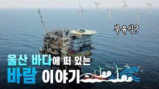 울산 바다 위에 떠 있는 '바람' 이야기 | 부유식 해상풍력