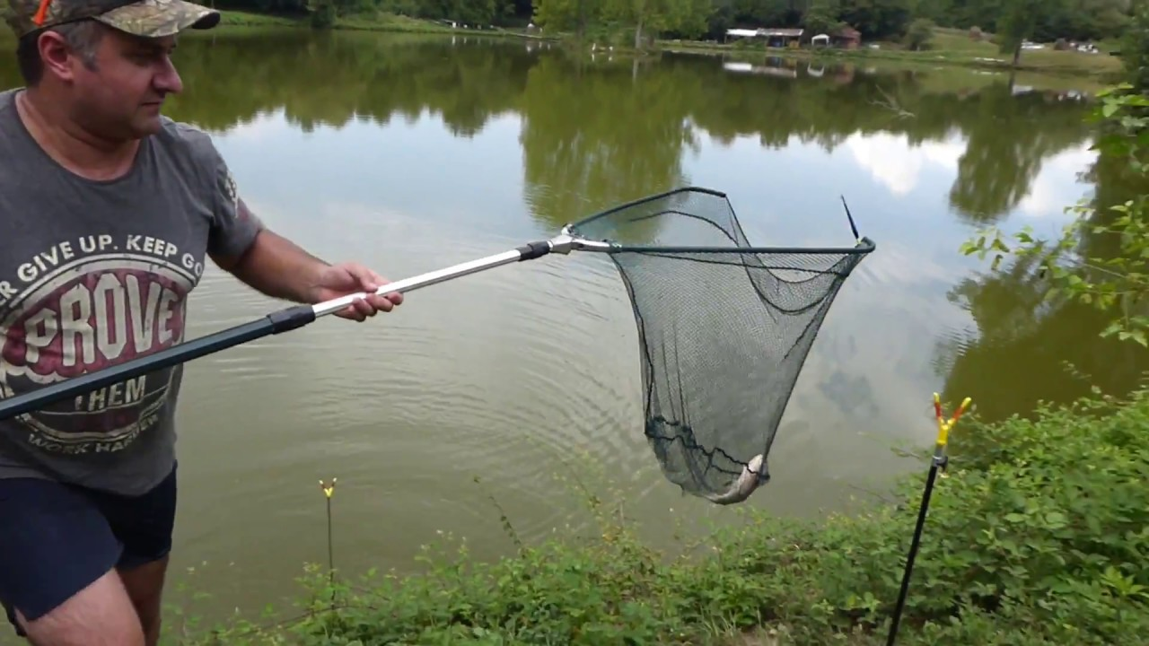 თევზაობა ზიარის ტბაზე და თევზის შებოლვა